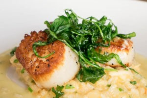 Scallops at Field & Tides