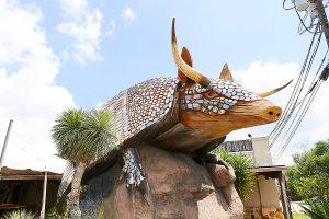 giant armadillo at Goode Co.