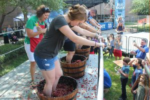 Festa Italiana grape stomping