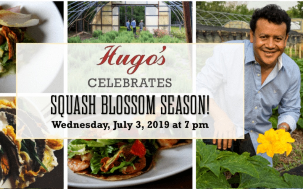 multiple images of squash blossoms and dishes with chef Hugo Ortega