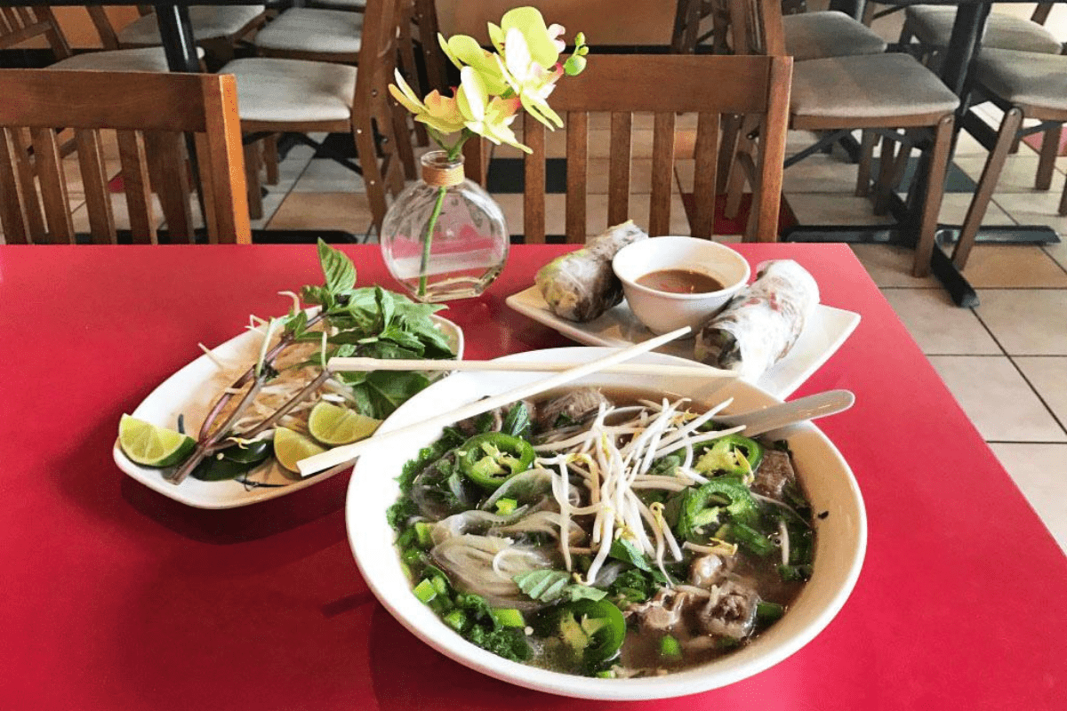 Bowl of pho plus spring rolls