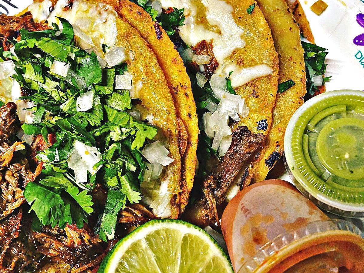 think tacos truck birria
