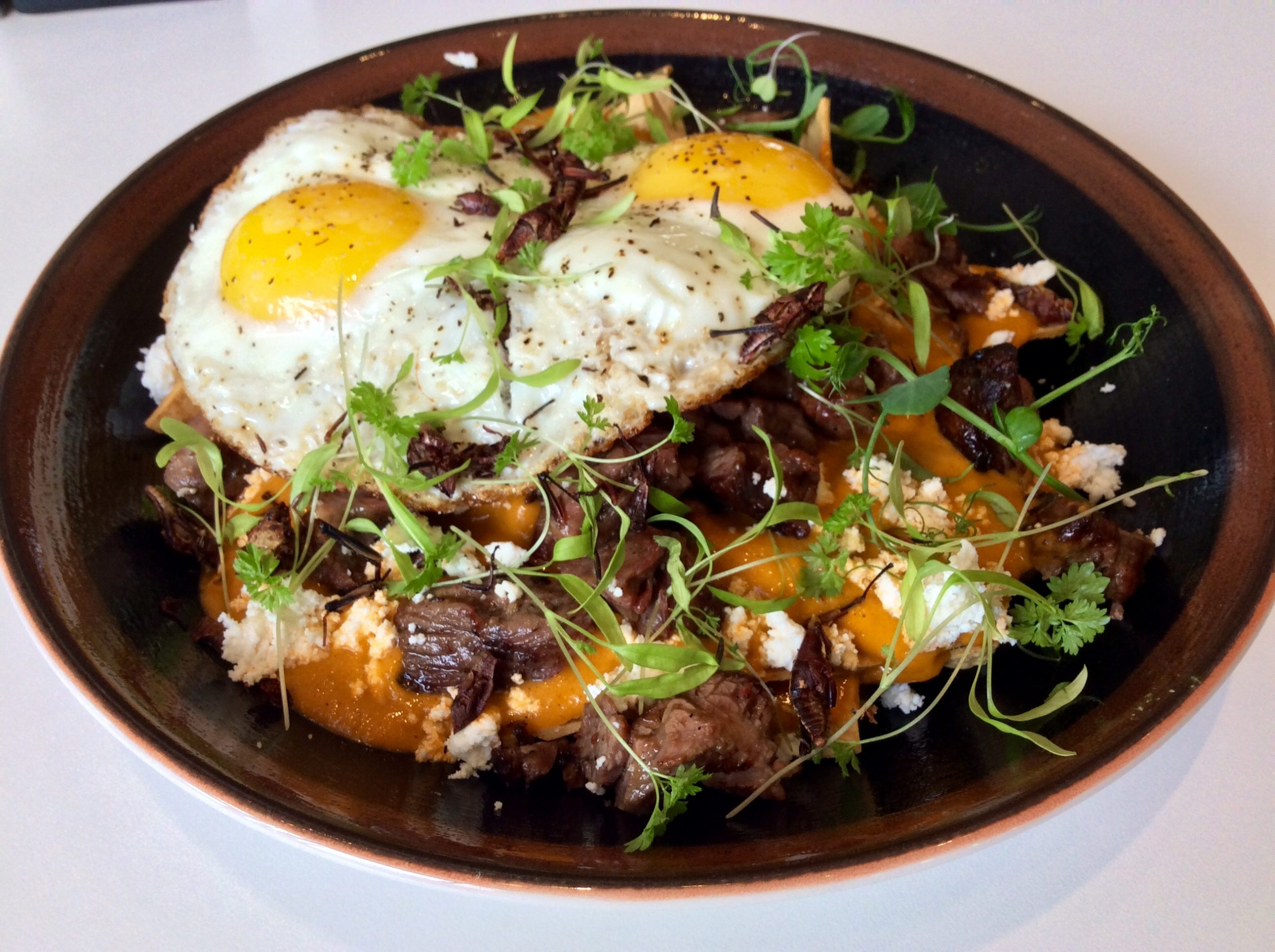 Photo of chilaquiles topped with a fried egg.
