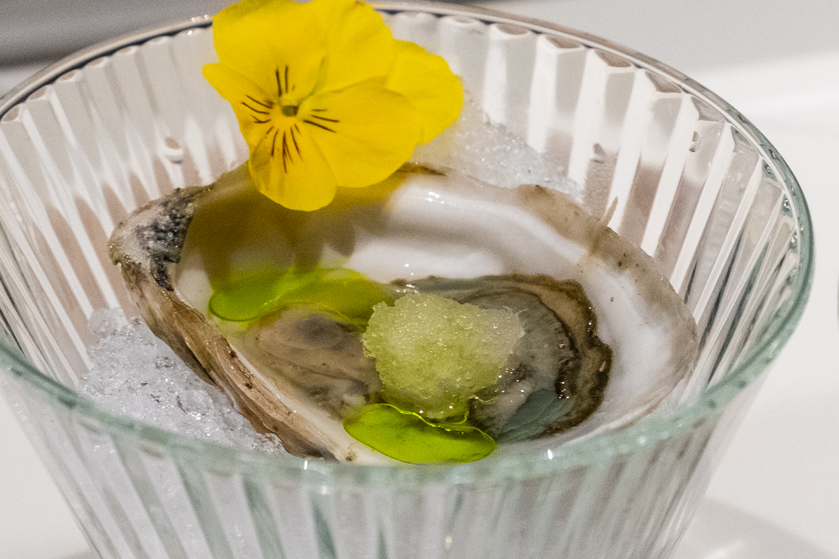 Boomamotos oysters with yuzu slush and cilantro oil at Hidden Omakase